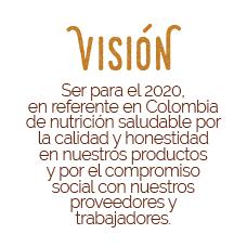 Nuestra vision
